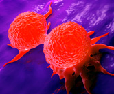 T_0317_breast-cancer-cells_477576274_A